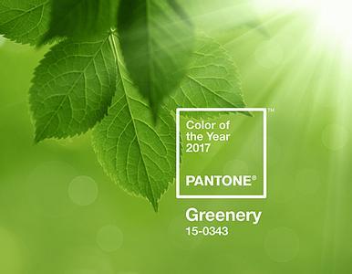 Pantone發佈2017年度色—Greenery (15-0343)
